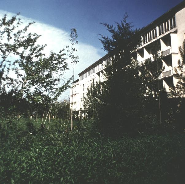 Судорога Кивательная фото