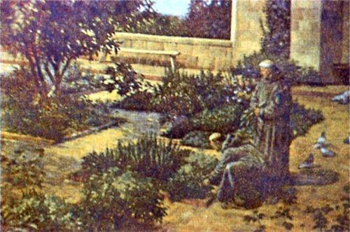 Сад лекарственных растений