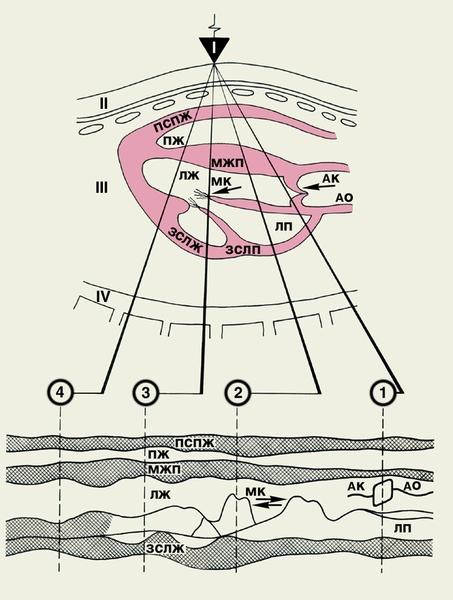 Схема основных позиций