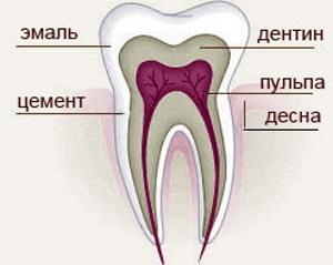 Натуральный цвет зубов. Как определить первозданную белизну?