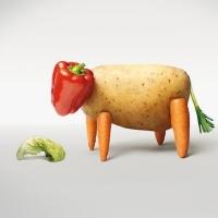 Ученые рассказали о негативном эффекте вегетарианства