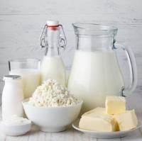 Чем молочные продукты полезны для фигуры и здоровья