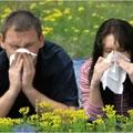 Мужчины страдают аллергией чаще, чем женщины?