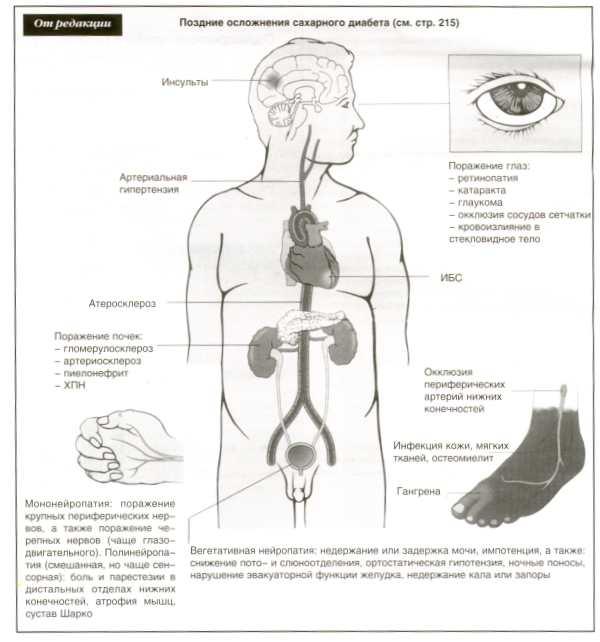 диетолог вузы