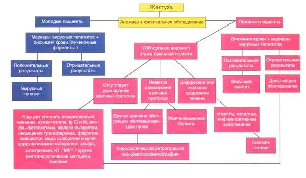Показатели анализа пцр при гепатите с